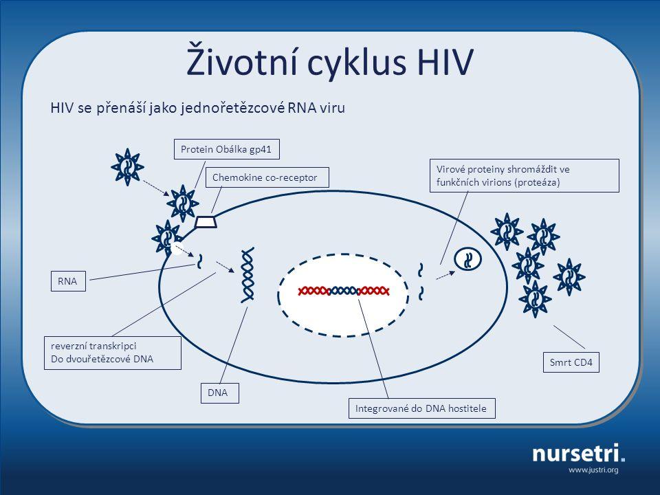HIV se přenáší jako jednořetězcové RNA viru reverzní transkripci Do dvouřetězcové DNA Integrované do DNA hostitele Smrt CD4 Životní cyklus HIV RNA DNA