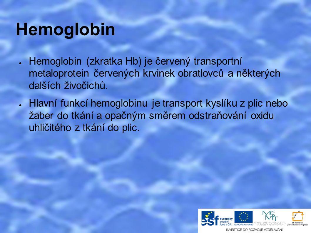 Hemoglobin ● Hemoglobin (zkratka Hb) je červený transportní metaloprotein červených krvinek obratlovců a některých dalších živočichů.