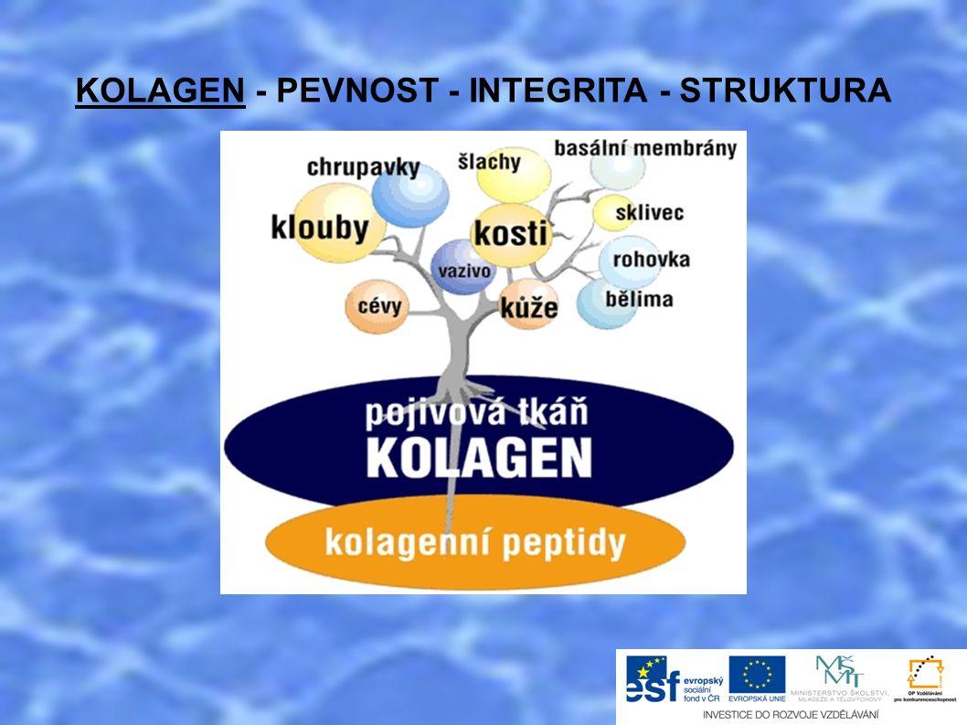 KOLAGEN - PEVNOST - INTEGRITA - STRUKTURA