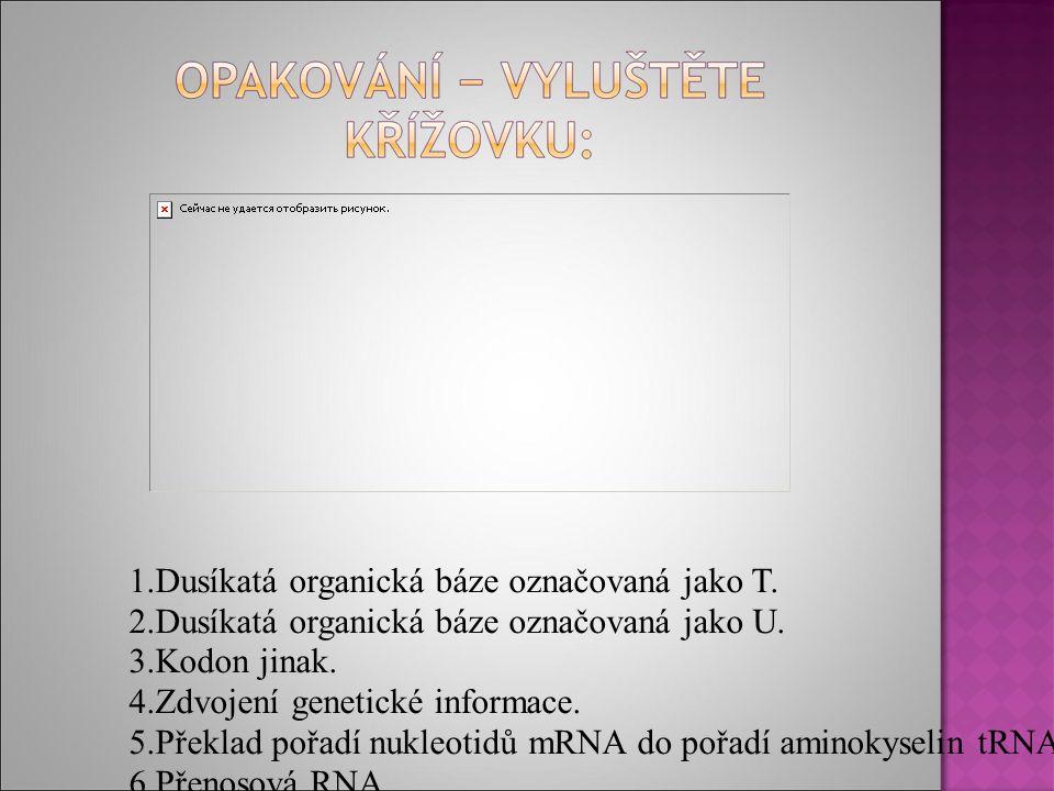 1.Dusíkatá organická báze označovaná jako T. 2.Dusíkatá organická báze označovaná jako U.