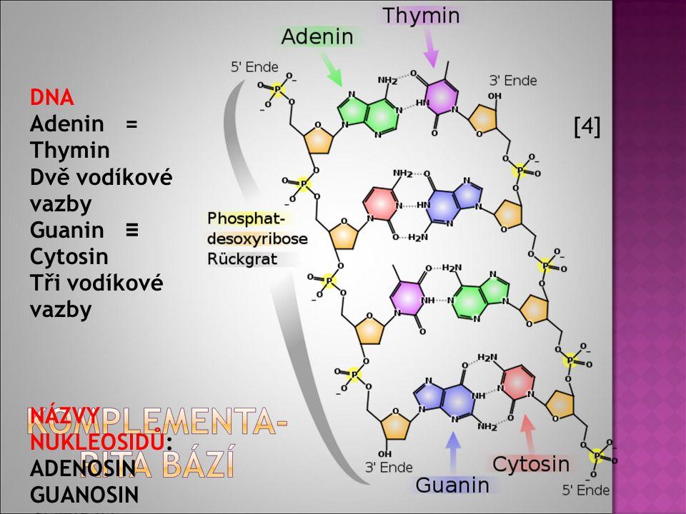  DNA je nositelem základní genetické informace buňky.