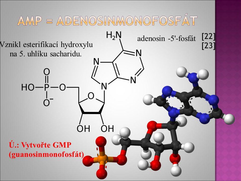  Negativní mutace (RTG záření, chemické látky) poškozují organismus.