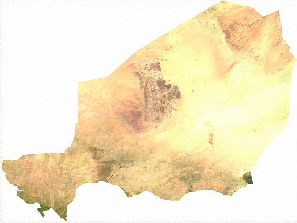 Sahelská specialita - sběr arabské gumy (stabilizátor E414)