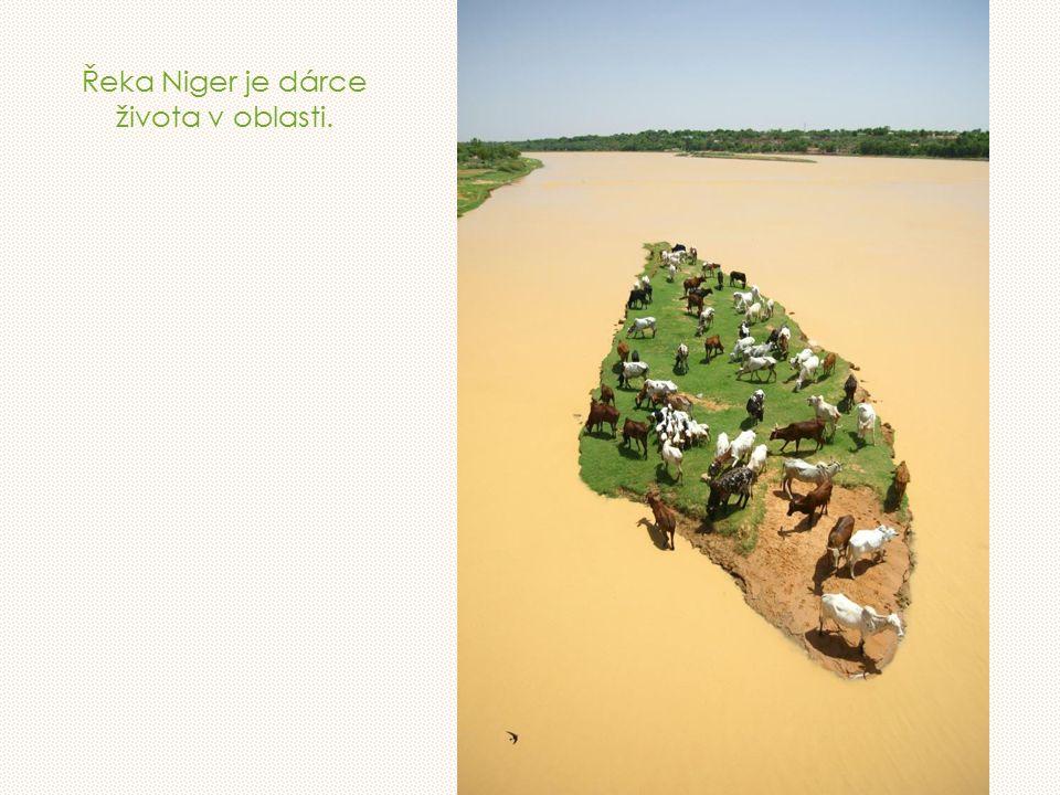 Řeka Niger je dárce života v oblasti.