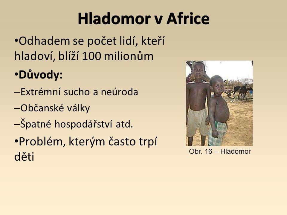 Hladomor v Africe Odhadem se počet lidí, kteří hladoví, blíží 100 milionům Důvody: – Extrémní sucho a neúroda – Občanské války – Špatné hospodářství atd.