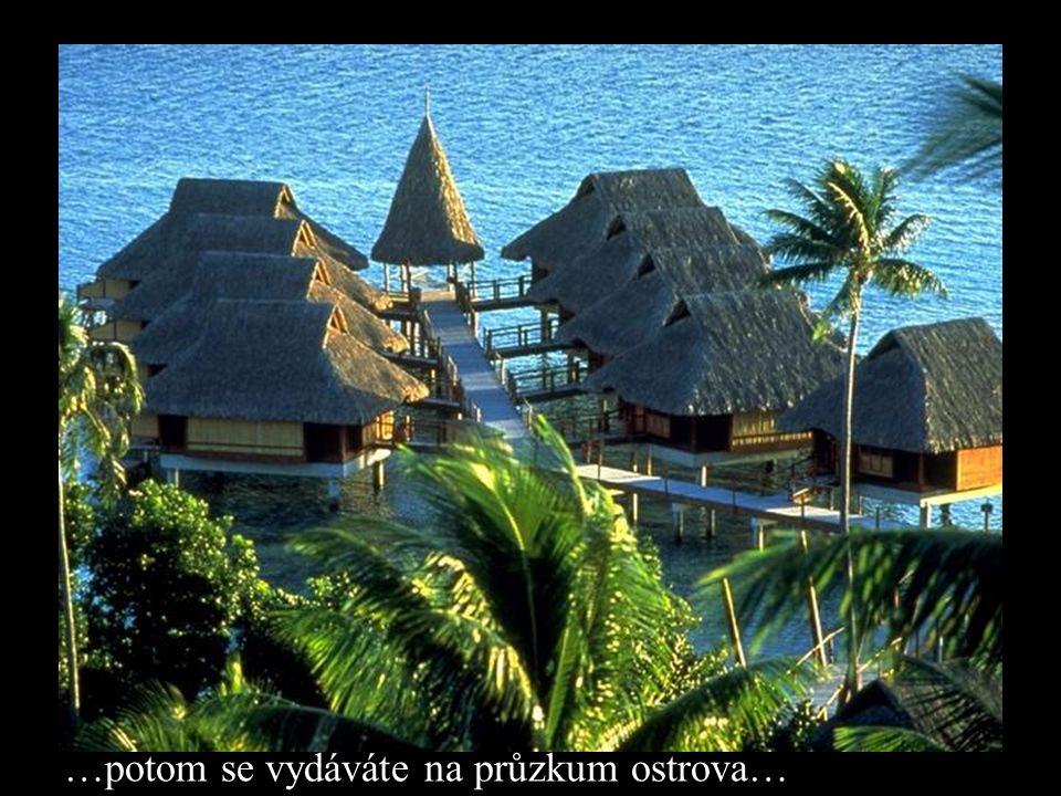…potom se vydáváte na průzkum ostrova…