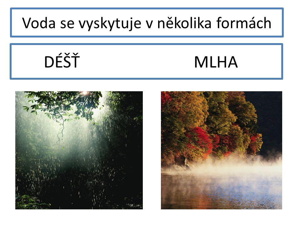 Voda se vyskytuje v několika formách DÉŠŤ MLHA