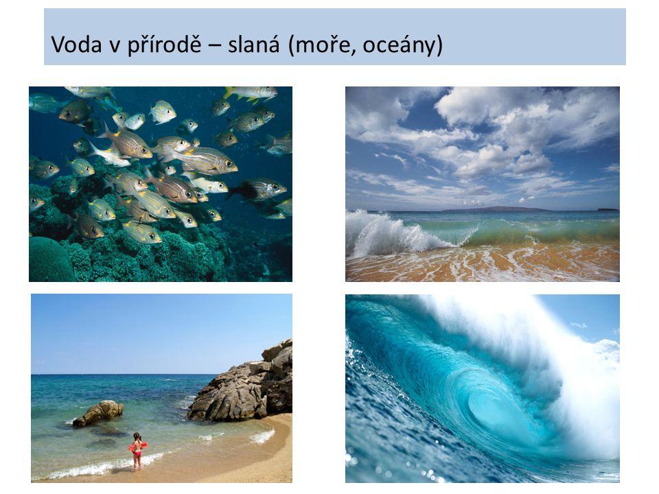 Voda v přírodě – slaná (moře, oceány)