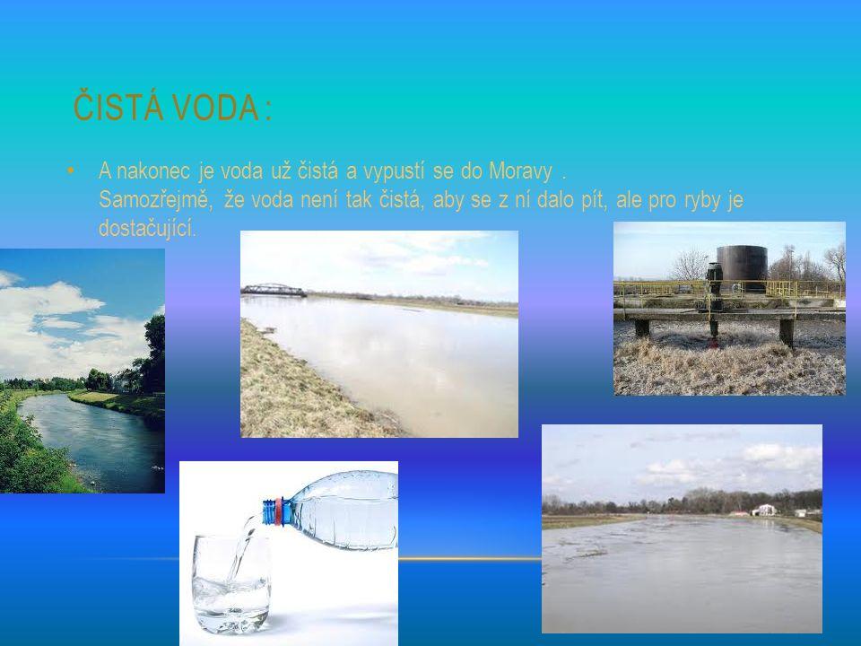 ČISTÁ VODA : A nakonec je voda už čistá a vypustí se do Moravy.