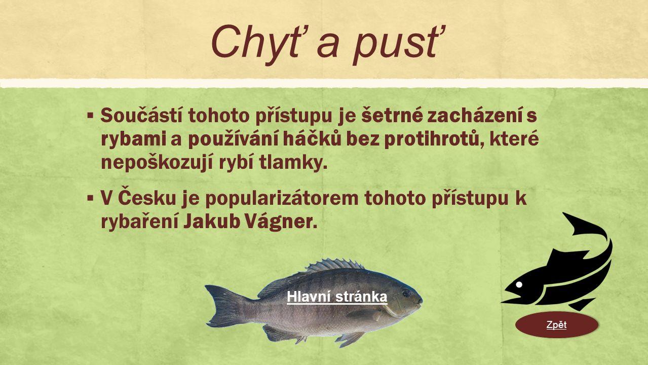  Součástí tohoto přístupu je šetrné zacházení s rybami a používání háčků bez protihrotů, které nepoškozují rybí tlamky.