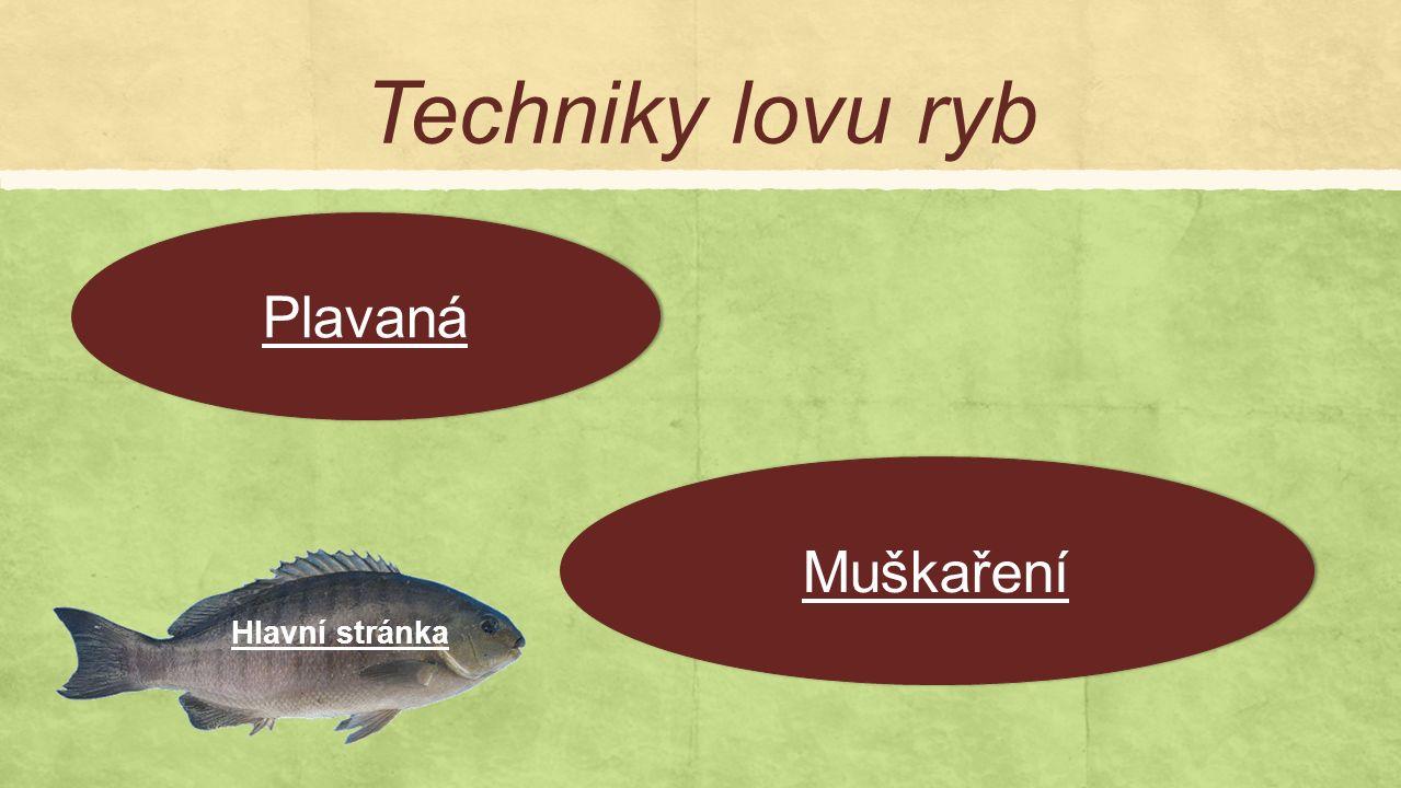 Techniky lovu ryb Plavaná Muškaření Hlavní stránka