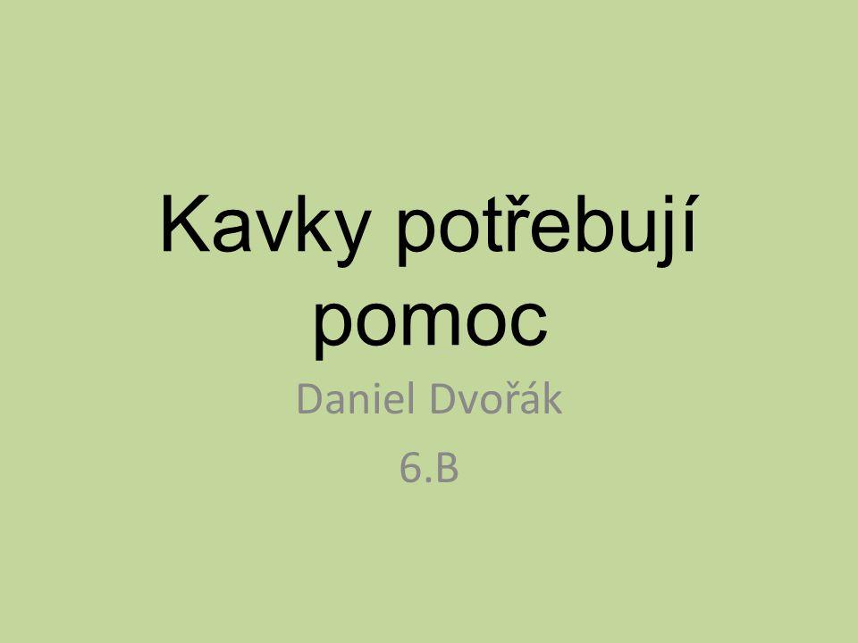 Kavky potřebují pomoc Daniel Dvořák 6.B