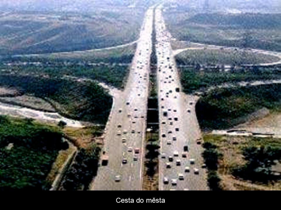 Cesta do města