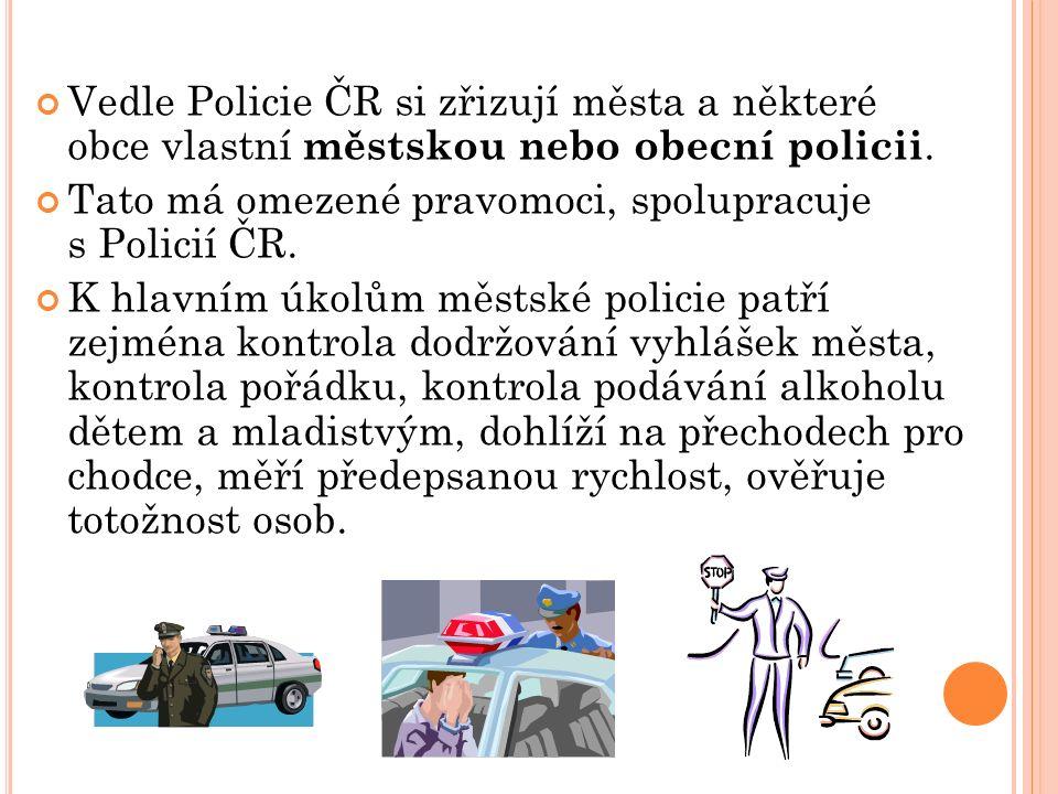 Vedle Policie ČR si zřizují města a některé obce vlastní městskou nebo obecní policii.