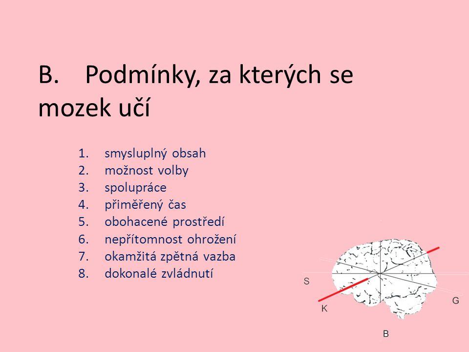 B.Podmínky, za kterých se mozek učí 1.smysluplný obsah 2.možnost volby 3.spolupráce 4.přiměřený čas 5.obohacené prostředí 6.nepřítomnost ohrožení 7.okamžitá zpětná vazba 8.dokonalé zvládnutí