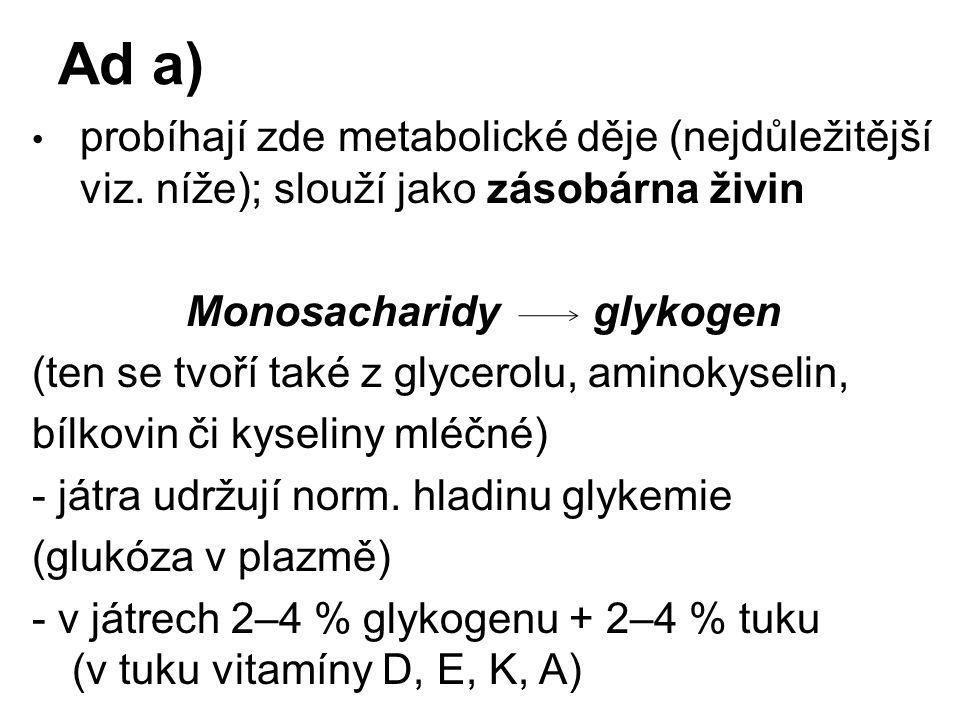 Ad a) probíhají zde metabolické děje (nejdůležitější viz. níže); slouží jako zásobárna živin Monosacharidy glykogen (ten se tvoří také z glycerolu, am