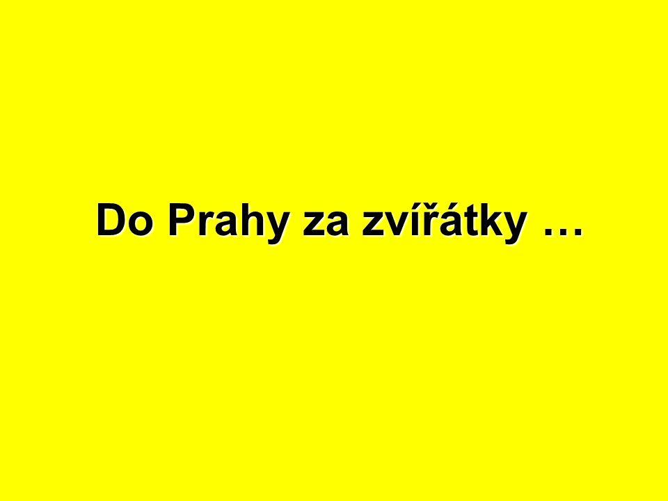 Do Prahy za zvířátky …