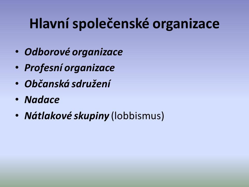 Hlavní společenské organizace Odborové organizace Profesní organizace Občanská sdružení Nadace Nátlakové skupiny (lobbismus)