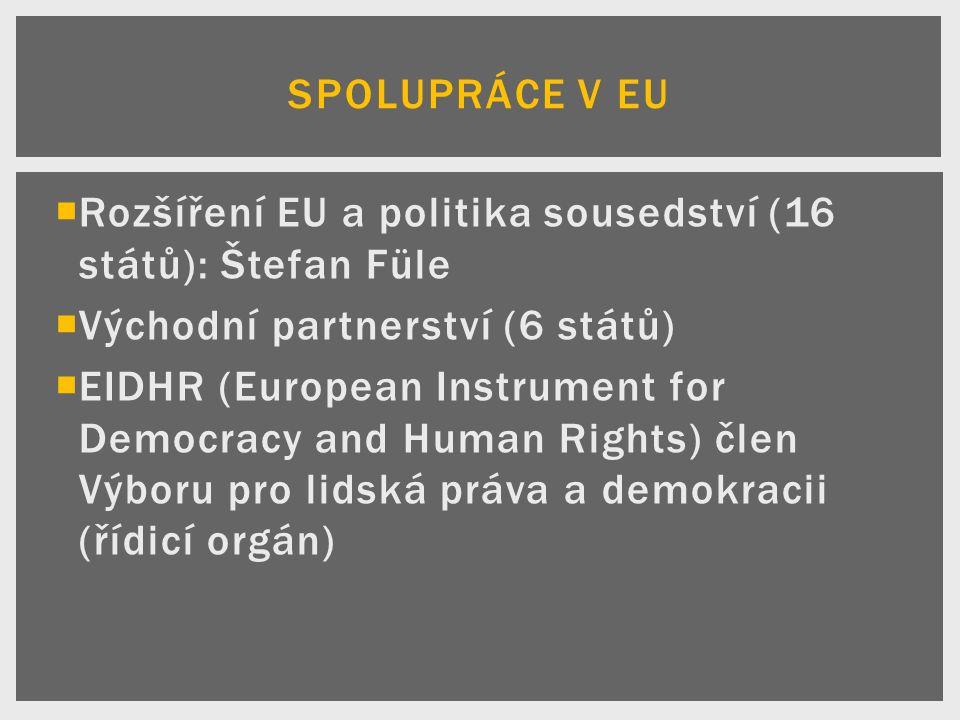  Rozšíření EU a politika sousedství (16 států): Štefan Füle  Východní partnerství (6 států)  EIDHR (European Instrument for Democracy and Human Rights) člen Výboru pro lidská práva a demokracii (řídicí orgán) SPOLUPRÁCE V EU
