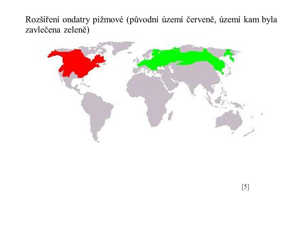 [5][5] Rozšíření ondatry pižmové (původní území červeně, území kam byla zavlečena zeleně)