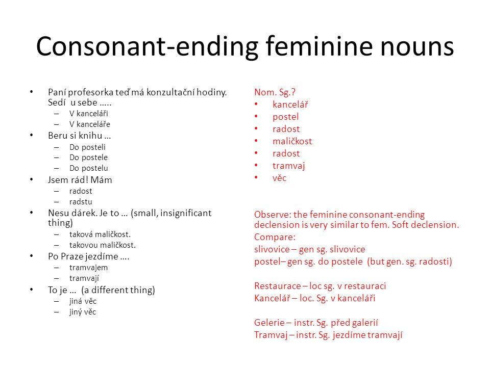Consonant-ending feminine nouns Paní profesorka teď má konzultační hodiny.