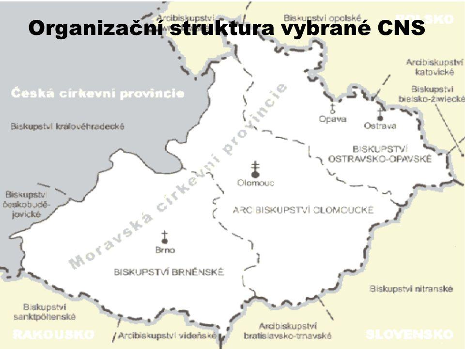 Organizační struktura vybrané CNS
