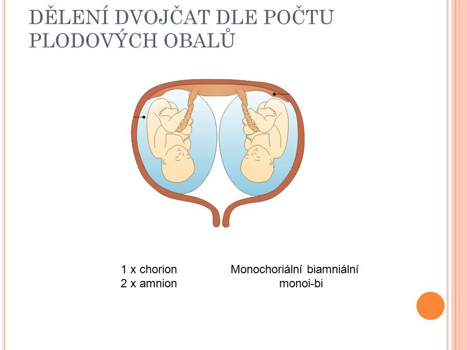 DĚLENÍ DVOJČAT DLE POČTU PLODOVÝCH OBALŮ 1 x chorion 2 x amnion Monochoriální biamniální monoi-bi