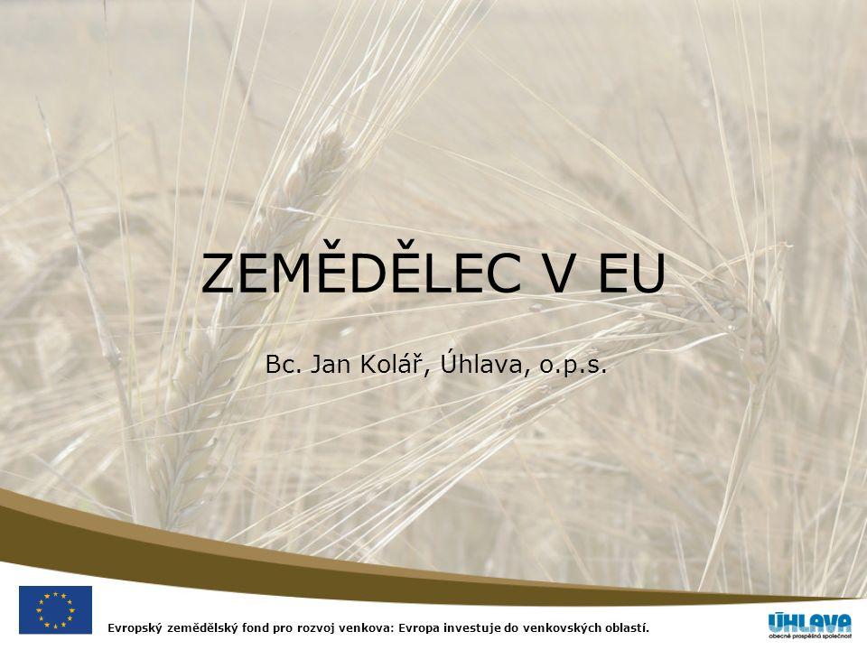 Evropský zemědělský fond pro rozvoj venkova: Evropa investuje do venkovských oblastí.