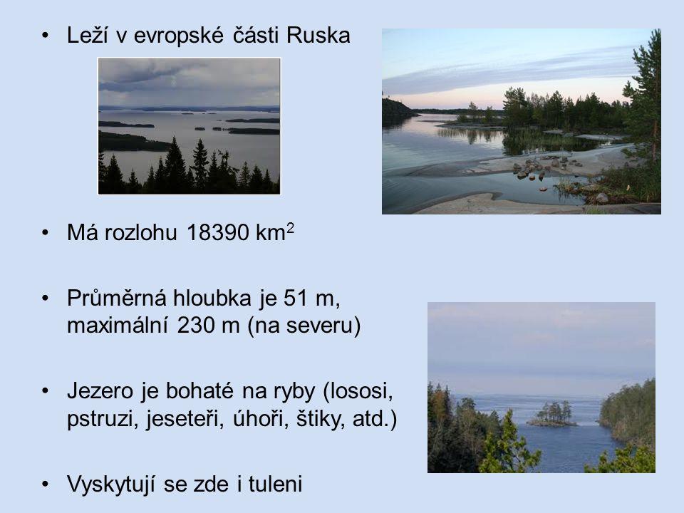 Leží v evropské části Ruska Má rozlohu 18390 km 2 Průměrná hloubka je 51 m, maximální 230 m (na severu) Jezero je bohaté na ryby (lososi, pstruzi, jeseteři, úhoři, štiky, atd.) Vyskytují se zde i tuleni