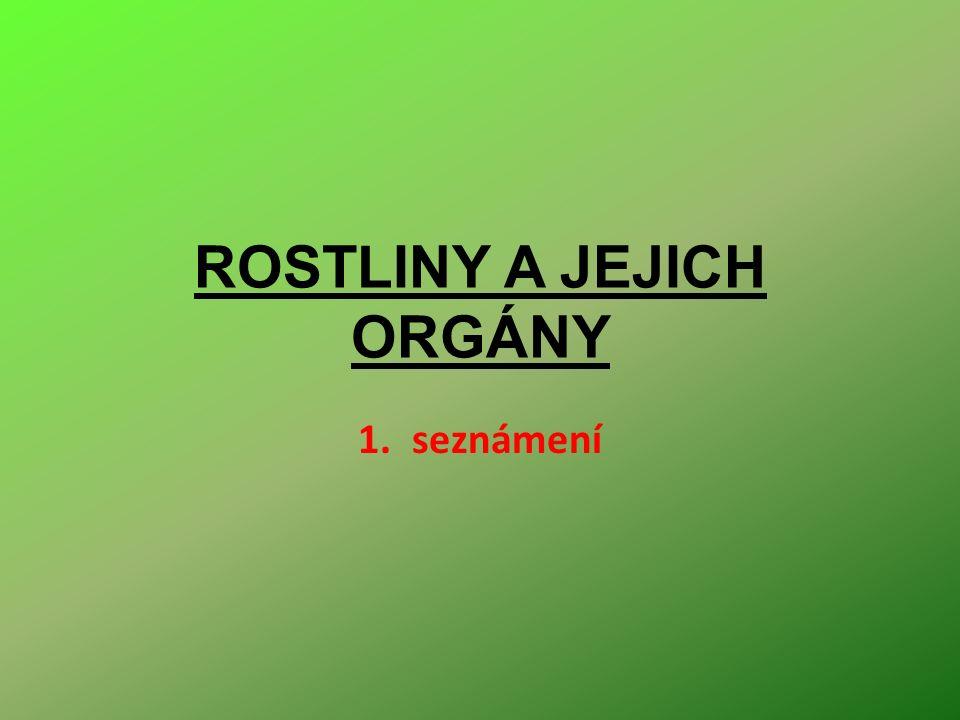 ROSTLINY A JEJICH ORGÁNY 1.seznámení