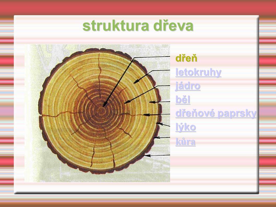 struktura dřeva dřeň letokruhy jádro běl dřeňové paprsky dřeňové paprsky lýko kůra