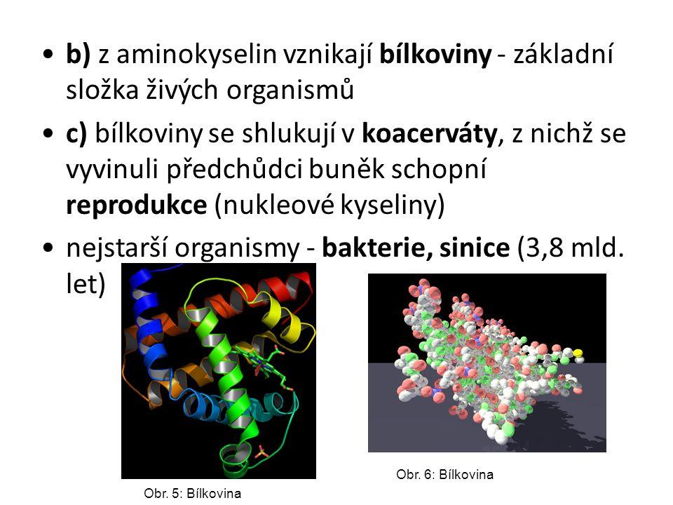 b) z aminokyselin vznikají bílkoviny - základní složka živých organismů c) bílkoviny se shlukují v koacerváty, z nichž se vyvinuli předchůdci buněk sc