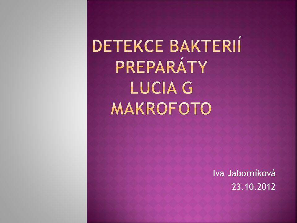 Iva Jaborníková 23.10.2012