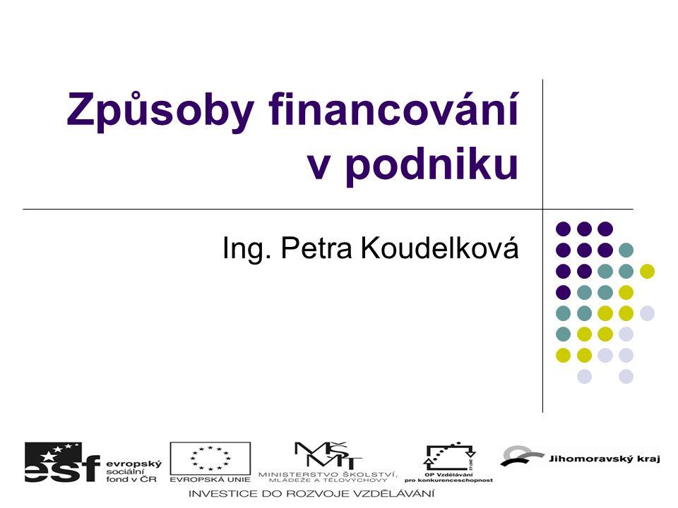 Způsoby financování v podniku Ing. Petra Koudelková
