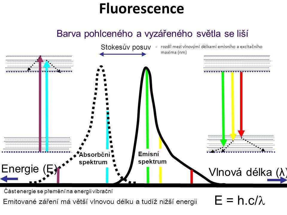 Emisní spektrum Absorbční spektrum Barva pohlceného a vyzářeného světla se liší Vlnová délka (λ) Stokesův posuv Energie (E) Fluorescence E = h.c/ Emitované záření má větší vlnovou délku a tudíž nižší energii -rozdíl mezi vlnovými délkami emisního a excitačního maxima (nm) Část energie se přemění na energii vibrační