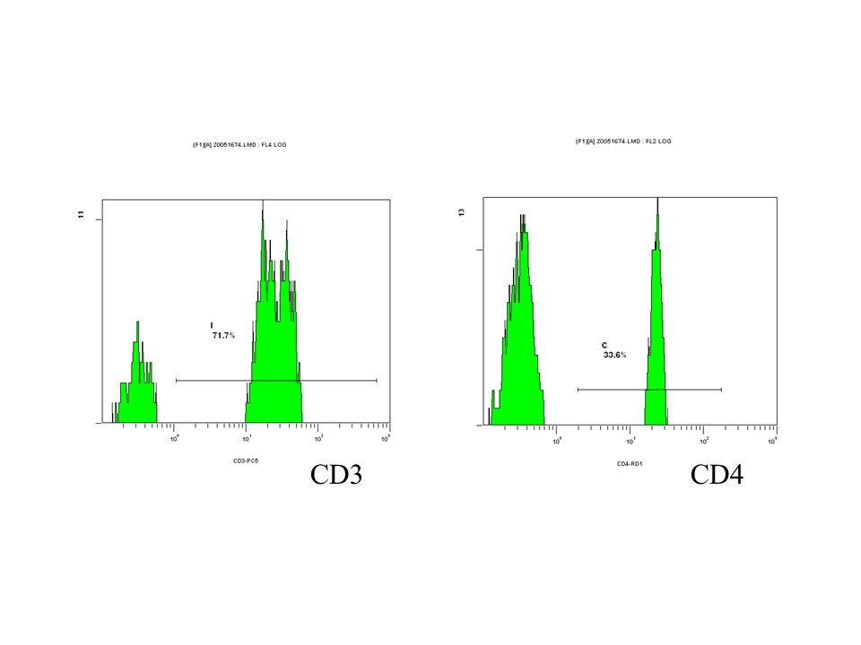 CD3CD4