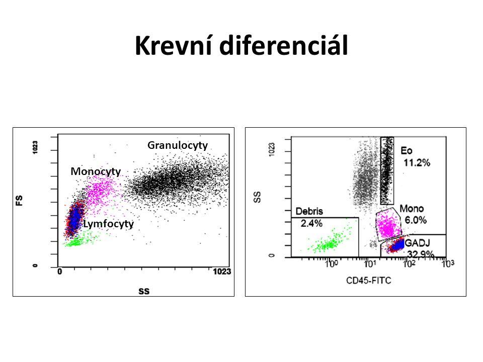 Krevní diferenciál Monocyty Granulocyty Lymfocyty