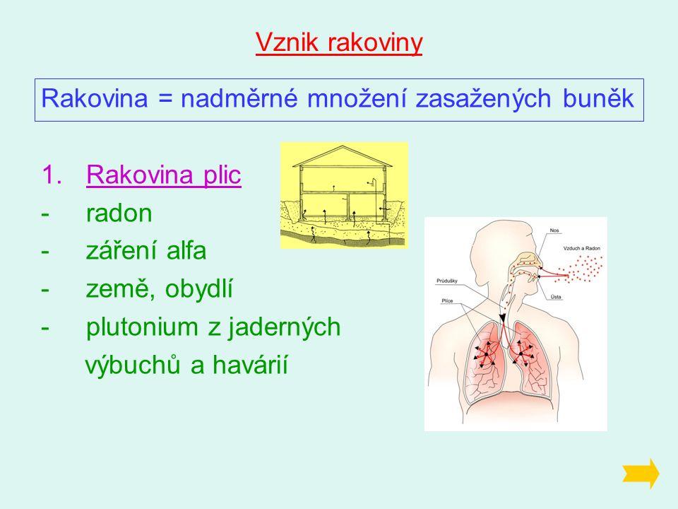 Vznik rakoviny Rakovina = nadměrné množení zasažených buněk 1.Rakovina plic -radon -záření alfa -země, obydlí -plutonium z jaderných výbuchů a havárií