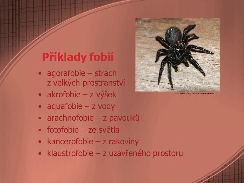 Příklady fobií agorafobie – strach z velkých prostranství akrofobie – z výšek aquafobie – z vody arachnofobie – z pavouků fotofobie – ze světla kancer