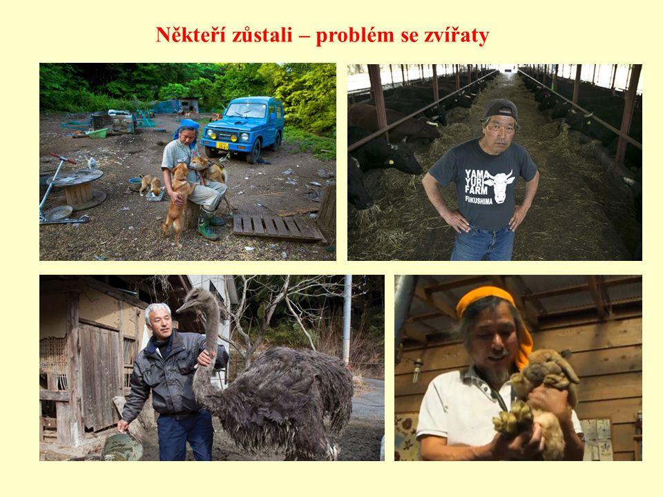 Někteří zůstali – problém se zvířaty