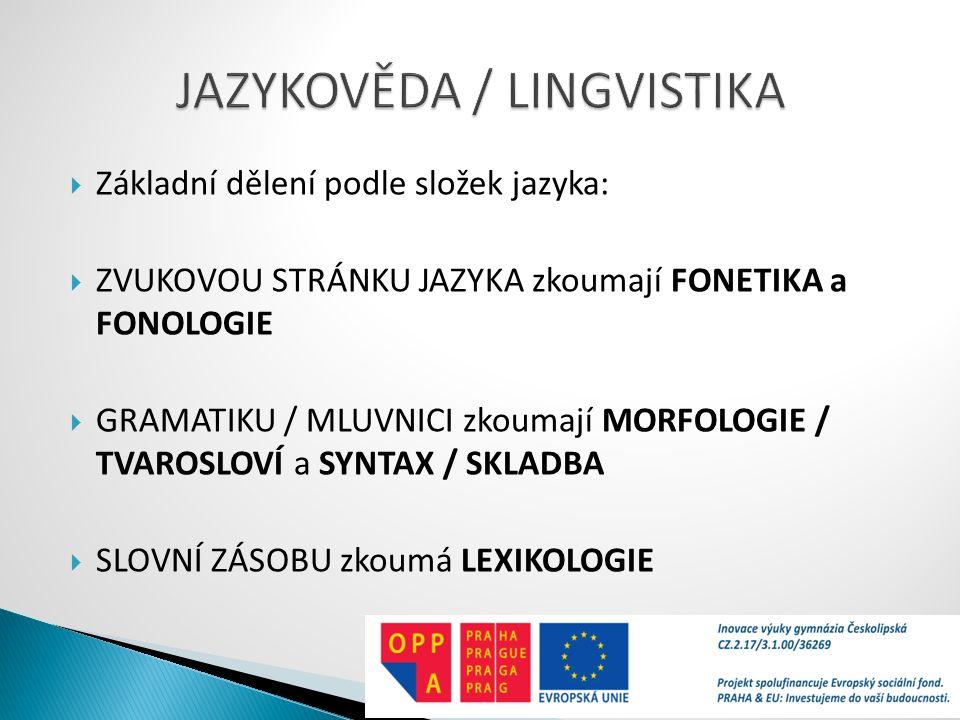  Základní dělení podle složek jazyka:  ZVUKOVOU STRÁNKU JAZYKA zkoumají FONETIKA a FONOLOGIE  GRAMATIKU / MLUVNICI zkoumají MORFOLOGIE / TVAROSLOVÍ a SYNTAX / SKLADBA  SLOVNÍ ZÁSOBU zkoumá LEXIKOLOGIE