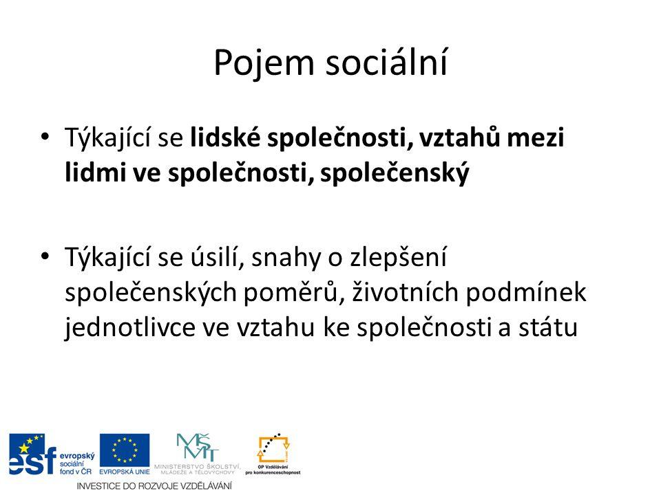 Sociální péče = sociální práce Sociální práce je činnost, která předchází nebo upravuje problémy jednotlivců, skupin a komunit, vznikající z konfliktů potřeb jedinců a společenských institucí.