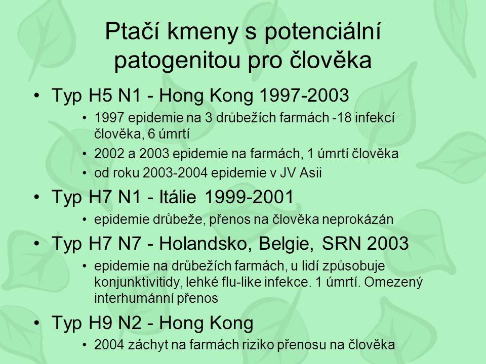 Ptačí kmeny s potenciální patogenitou pro člověka Typ H5 N1 - Hong Kong 1997-2003 1997 epidemie na 3 drůbežích farmách -18 infekcí člověka, 6 úmrtí 2002 a 2003 epidemie na farmách, 1 úmrtí člověka od roku 2003-2004 epidemie v JV Asii Typ H7 N1 - Itálie 1999-2001 epidemie drůbeže, přenos na člověka neprokázán Typ H7 N7 - Holandsko, Belgie, SRN 2003 epidemie na drůbežích farmách, u lidí způsobuje konjunktivitidy, lehké flu-like infekce.