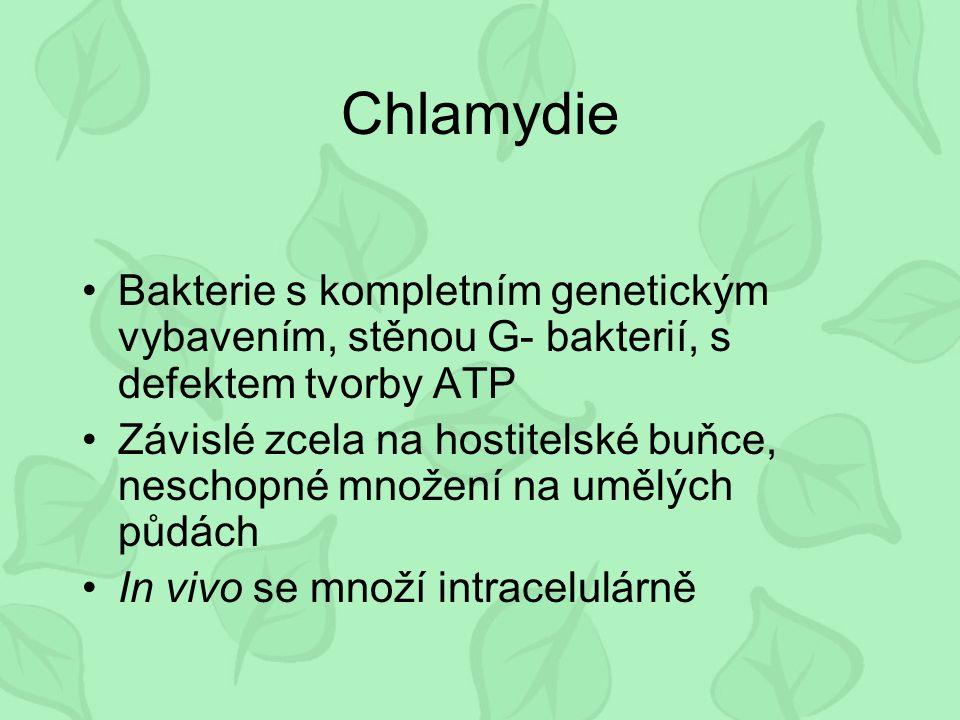 Chlamydie Bakterie s kompletním genetickým vybavením, stěnou G- bakterií, s defektem tvorby ATP Závislé zcela na hostitelské buňce, neschopné množení na umělých půdách In vivo se množí intracelulárně