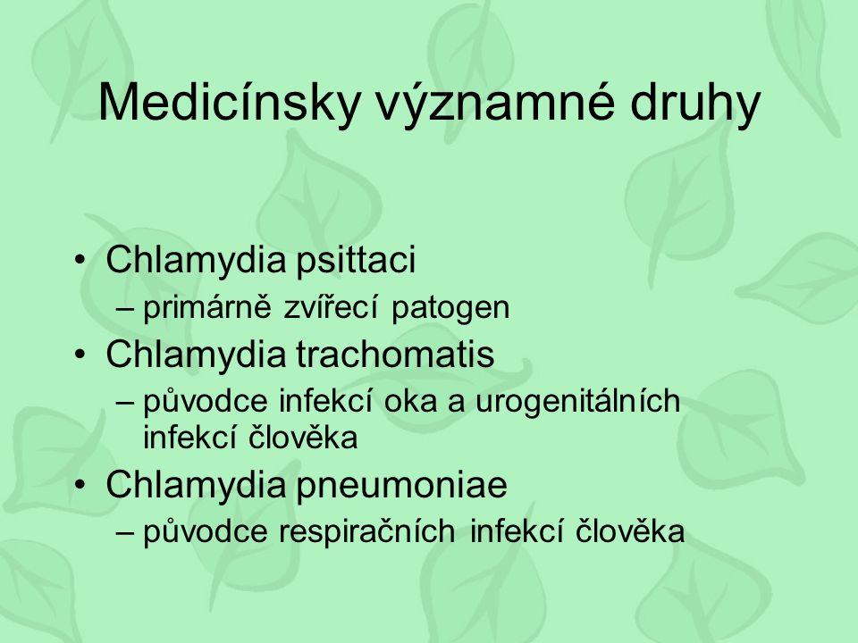 Medicínsky významné druhy Chlamydia psittaci –primárně zvířecí patogen Chlamydia trachomatis –původce infekcí oka a urogenitálních infekcí člověka Chlamydia pneumoniae –původce respiračních infekcí člověka
