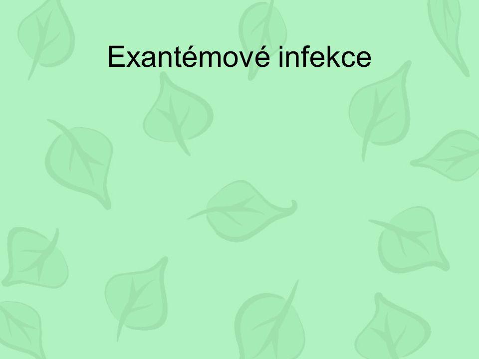 Exantémové infekce