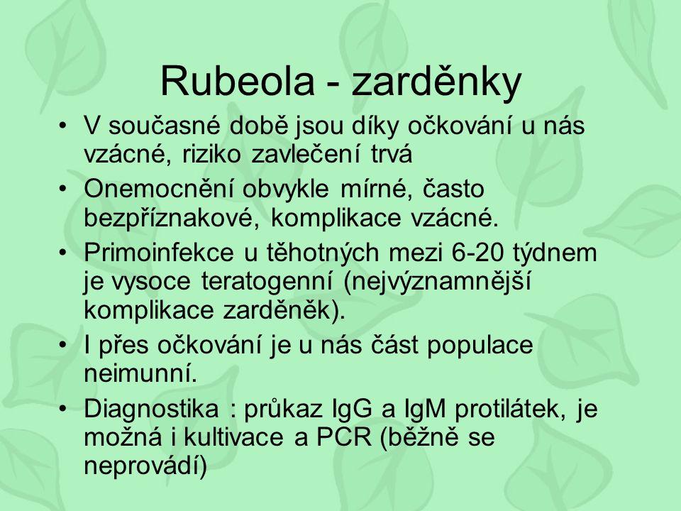 Rubeola - zarděnky V současné době jsou díky očkování u nás vzácné, riziko zavlečení trvá Onemocnění obvykle mírné, často bezpříznakové, komplikace vzácné.