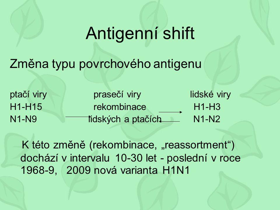 """Antigenní shift Změna typu povrchového antigenu ptačí viry prasečí viry lidské viry H1-H15 rekombinace H1-H3 N1-N9 lidských a ptačích N1-N2 K této změně (rekombinace, """"reassortment ) dochází v intervalu 10-30 let - poslední v roce 1968-9, 2009 nová varianta H1N1"""