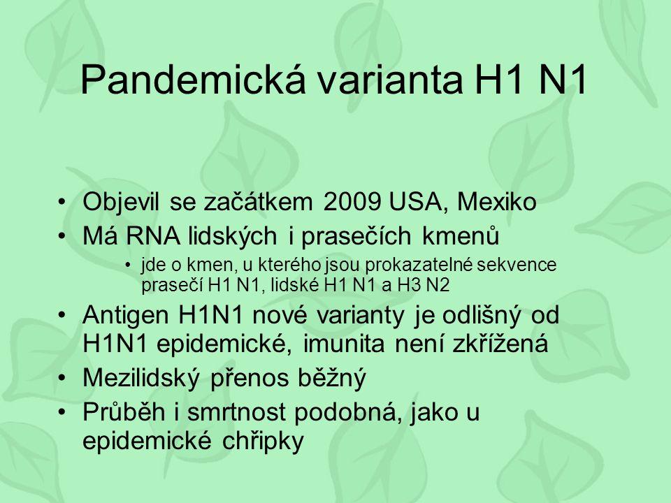 Pandemická varianta H1 N1 Objevil se začátkem 2009 USA, Mexiko Má RNA lidských i prasečích kmenů jde o kmen, u kterého jsou prokazatelné sekvence prasečí H1 N1, lidské H1 N1 a H3 N2 Antigen H1N1 nové varianty je odlišný od H1N1 epidemické, imunita není zkřížená Mezilidský přenos běžný Průběh i smrtnost podobná, jako u epidemické chřipky