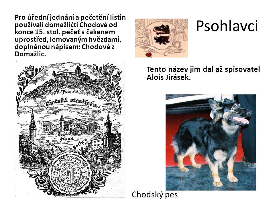 Psohlavci Tento název jim dal až spisovatel Alois Jirásek.